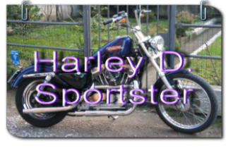harley davidson sportster 82 03 chopper sitzbank granucci. Black Bedroom Furniture Sets. Home Design Ideas
